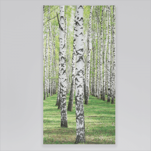 Roleta rzymska - BIRCH TREE FOREST